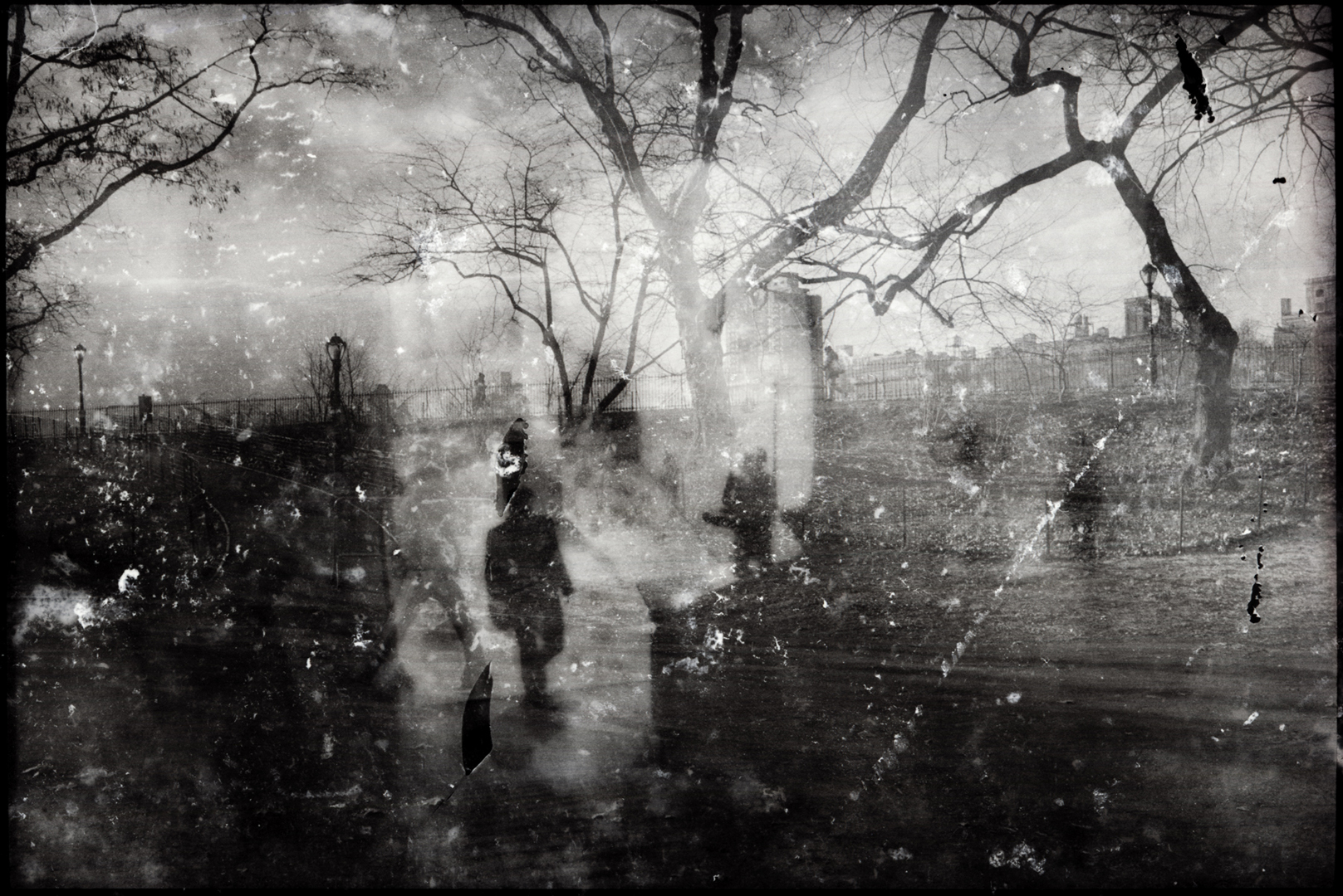 Cynthia Karalla / Photographer