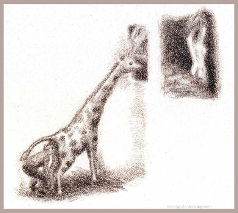 periscpe-giraff