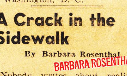Barbara Rosenthal/A Crack in the Sidewalk