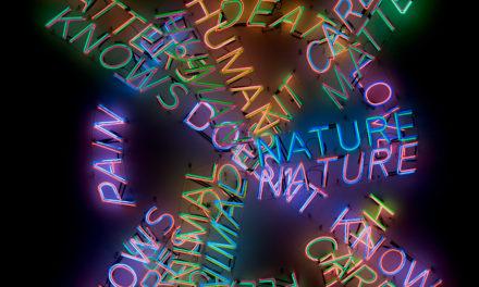 Bruce Nauman at MoMA