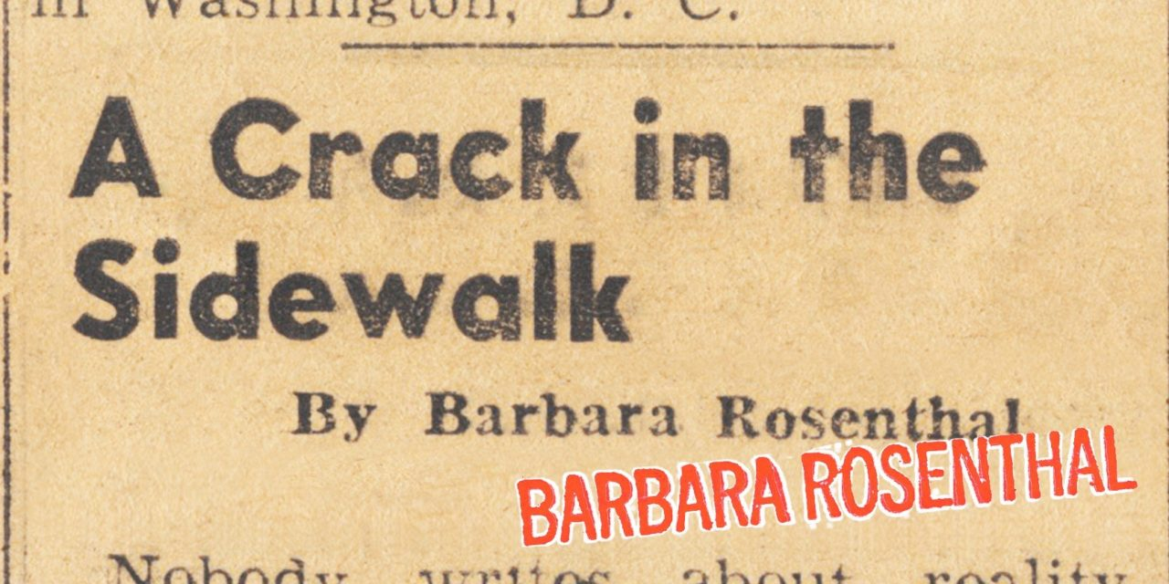 A Crack in the Sidewalk/Barbara Rosenthal