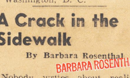 A Crack in the Sidewalk/Barbara Rosenthal
